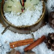 Stock Photo: Clock and fir branches under snow close up