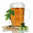 Stock Photo: Glass of beer and hops, isolated on white