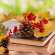 Books and autumn leaves on wooden table on natural background — Stock Photo #37726611