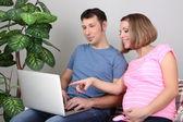 Junge schwangere frau mit ihrem mann halten laptop auf sofa zu hause — Stockfoto