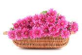 白で隔離されるバスケット ピンク秋菊の花束 — ストック写真