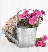 Boeket van roze chrysant in gieter op witte houten achtergrond — Stockfoto