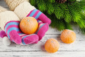 Hands in mittens holding tangerine on wooden background — Stock Photo