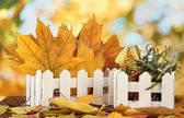 Beautiful autumn leaves in wooden stand on table on bright background — Stock Photo