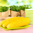 Boiled corn on pink table cloths on background of nature — Stock Photo #37939109