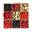 Different summer berries in wooden crate isolated on white — Stock Photo #37939535