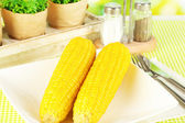 Boiled corn and flowers on a background of nature — Stock Photo