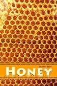 Yellow beautiful honeycomb with honey, background — Stock Photo