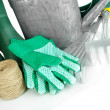 Stock Photo: Gardening tools close up