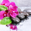 Composition with beautiful blooming orchid with water drops and spa stones, on light color background — Stock Photo #37941383