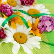 Stock Photo: Background of daisies and clove