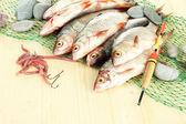 Ryby na łowienie na drewniane tła — Zdjęcie stockowe