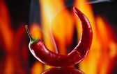 Red hot chili pepper on fire background — Stock Photo