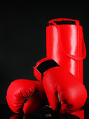 Boxing gloves and punching bag, isolated on black — Stock fotografie
