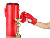 Box training and punching bag, isolated on white — Stock Photo