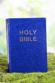 Bible on grass on natural background — Foto de Stock