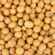 Soy beans close-up — Foto de stock #38101817
