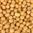 Soy beans close-up — Foto Stock #38101817