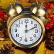 Old clock on autumn leaves close-up — Zdjęcie stockowe #38102879