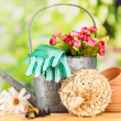 Stock Photo: Gardening tools and flowers on wooden table, outdoors