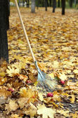 Cleaning of autumn leaves in park — Foto de Stock