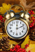Old clock on autumn leaves close-up — Стоковое фото