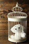 Toy rabbit in decorative cage on wooden background — Stock Photo