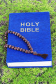 Bible with cross on grass close-up — Foto Stock