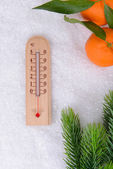 Thermometer in snow close-up — Foto Stock