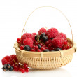 Ripe berries in basket isolated on whit — Stock Photo #38183871