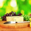 Stock Photo: Cheese with mold on cutting board with grapes on bright green background