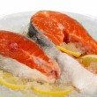 Pieces of red fish on ice in plate isolated on white — Stock Photo
