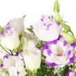 bouquet of eustoma flowers isolated on white — Stock Photo #38184693