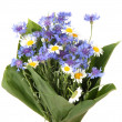 Beautiful bouquet of cornflowers and chamomiles ,isolated on white — Stock Photo #38184839