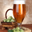 Stock Photo: Glass of beer and hops, on wooden table