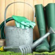 Stock Photo: Gardening tools on grass on wooden background