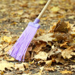 Cleaning of autumn leaves in park — Stock Photo #38186187