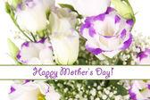 Bouquet of eustoma flowers isolated on white — Stock Photo