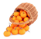 Small tangerines in wicker basket, isolated on white — Stock Photo