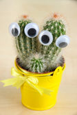 Funny cactus with eyes in bright pail on wooden table — Stock Photo
