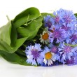 Beautiful bouquet of cornflowers and chamomiles ,isolated on white — Stock Photo #38324521