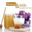 Honey and milk isolated on white — Stock Photo