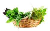 Fresh herbs in basket, isolated on white — Stock Photo