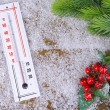 Thermometer in snow close-up — Stock Photo #38361699