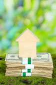 Wooden house on packs of dollars on grass on natural background — Stock Photo