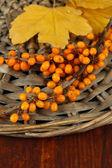 Rama de espino cerval de mar y amarillo hojas en el stand de mimbre sobre fondo de madera — Foto de Stock
