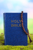 Bible with cross on grass on natural background — Stok fotoğraf