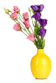 Bouquet of eustoma flowers in vase isolated on white — Stock Photo