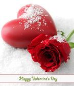 κόκκινο τριαντάφυλλο σε χιόνι φόντο — Φωτογραφία Αρχείου