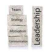 Leadership building blocks isolated on white — Stock Photo
